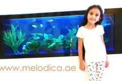 Melodica Music Center JLT Branch Dubai