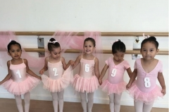 ballet dance dubai exam - melodica.ae
