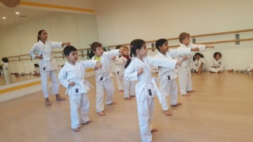 karate classes in dubai - Melodica.ae