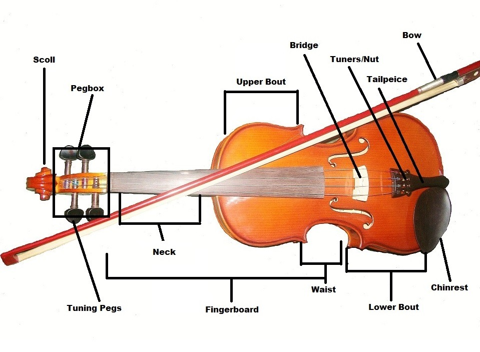 Basics of Violin Playing - Learn Violin step by step